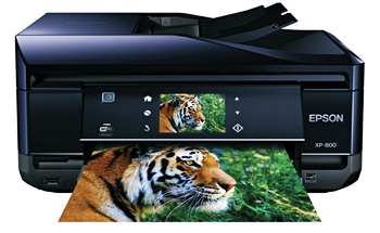 Epson Xp 800 Printer Driver Download